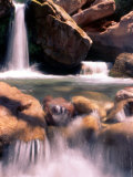 Waterfall on Side Canyon of Colorado River Photographic Print by Rebecca Marvil