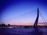 Erasmus Bridge, Erasmusbrug, Rotterdam Photographic Print by Barry Winiker