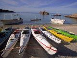 Sea Kayaking, Sea of Cortez, Baja CA, Mexico Photographic Print by Yvette Cardozo