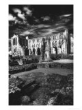 Rievaulx Abbey, Yorkshire, England Giclee Print by Simon Marsden