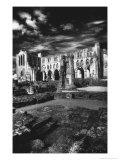 Rievaulx Abbey, Yorkshire, England Giclee Print by Simon Marsden
