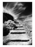 Steps Up to Queribus Castle, Languedoc, France Giclee Print by Simon Marsden