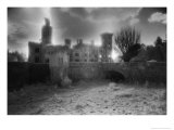Wilton Castle, County Wexford, Ireland Giclee Print by Simon Marsden