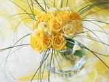 Yellow Tea Rosa in Glass Vase Photographie par Martine Mouchy