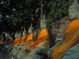 Buddhas, Wat Yai Chai Mongkhon, Ayuthaya, Thailand Fotografisk tryk af Frank Staub