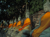 Buddhas, Wat Yai Chai Mongkhon, Ayuthaya, Thailand Photographic Print by Frank Staub