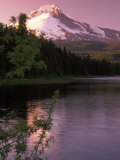 Mt. Hood &amp;Trillium Lake, OR Photographic Print by Donald Higgs