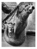 Gargoyle, St Andrews Church, Toddington, Gloucestershire, England Giclee Print by Simon Marsden