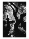 Graveyard, Nevern, Pembrokeshire, Wales Giclee Print by Simon Marsden