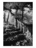 Broken Steps, Charleville Forest, County Offaly, Ireland Giclée-Druck von Simon Marsden