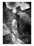 Arch, Ballynalackan Castle, County Clare, Ireland Giclee Print by Simon Marsden