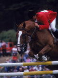 Horse Jumping, San Francisco, CA Photographic Print by Allen Russell