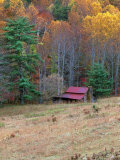 Cabin in Late Autumn in West Virginia Photographie par Robert Finken