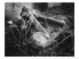 Broken Frieze, the Gardens, Plas Teg, Clwyd, Wales Giclee Print by Simon Marsden