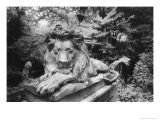 Lion Monument to Richard Charles Bostock, Abney Park Cemetery, London, England Giclee Print by Simon Marsden