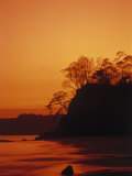 Pacific Coast Rain Forest at Dusk, Costa Rica Photographic Print by Robert Houser