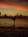 Woman Doing Yoga in Water at Sunset, Tahiti Photographic Print by Barry Winiker