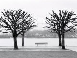 Along Lake Lucerne, Lucerne, Switzerland Photographic Print by Walter Bibikow
