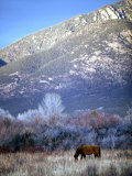 Nm, Taos, Sangre De Christo Mountains Photographic Print by Walter Bibikow