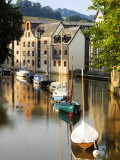 River Dart at Totnes, UK Photographic Print by David Clapp
