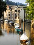 River Dart at Totnes, UK Photographic Print by David Clapp