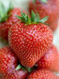 Strawberries (English) Photographie par Mark Bolton