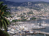 City and Marina, Funchal, Madeira, Portugal Photographic Print by Walter Bibikow