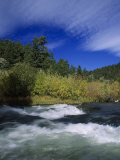 Trout Stream at Snake River Near Jackson Hole, WY Photographic Print by Bruce Clarke