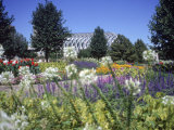Denver Botanic Gardens, Denver, CO Photographic Print by Sherwood Hoffman