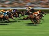 Thoroughbred Race in Action Photographic Print by Peter Walton