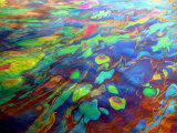 Oil on Water Rainbow Effect Caused by Varying Thickness of Oil Film on Water, Defracts Light Photographic Print by David M. Dennis