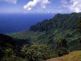 Kokee State Park, Honopu, HI Photographic Print by Bill Bachmann