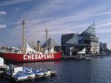 National Aquarium  Inner Harbor  Baltimore  MD