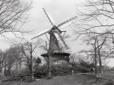 Windmill in Park, Alkmaar, Netherlands Photographic Print by Claire Rydell