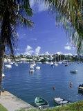 Boat in Harbor  Hamilton  Bermuda