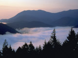 Fog, Hurricane Ridge, Olympic National Park, WA Photographic Print by Brian Maslyar
