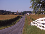 Country Road, Lancaster County, PA Photographic Print by Michele Burgess
