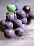 Close-up of Grapes Photographic Print by John Glembin