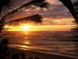 Sunset on the Ocean with Palm Trees, Oahu, HI Photographic Print by Bill Romerhaus