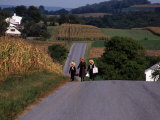 Amish Children, Lancaster County, PA Photographic Print by Michele Burgess