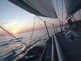 Sailboat Fotografisk trykk av Steve Essig