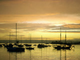 Sunset on Harbor, San Diego, CA Photographic Print by Roger Holden