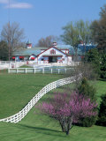 Calumet Horse Farm, Lexington, KY Photographic Print by David Davis