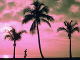 Silhouette of a Runner and Palm Trees Photographic Print by Maria Taglienti