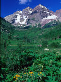 Wild Flowers and Mountain Maroon Bells, CO Photographic Print by David Carriere