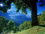 Wengwald, Switzerland Photographic Print by Peter Adams