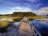 Uncle Tim&#39;s Bridge, Wellfleet, Cape Cod, MA Photographie par Jeff Greenberg