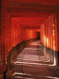 Fushimi-Inari Taisha Shrine, Japan Fotografie-Druck von Gary Conner