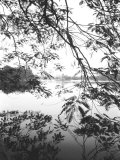 Hoan Kiem Lake View, Hanoi, Vietnam Photographic Print by Walter Bibikow