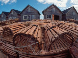 Fishing Huts & Lobster Pots, Pei, Canada Photographic Print by Pat Canova